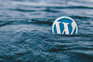 Wordpress mania